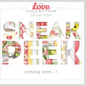 2014 Date Cards in the Shoppe!!!  Sneak Peak for new LOVE Collection :)
