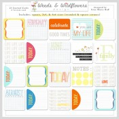 New Journal Cards in the shoppe!