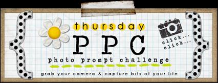 PPC header image